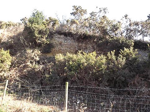 Hardown Hill before