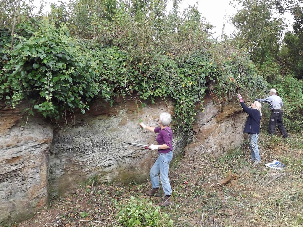 Cutting overhanging vegetation