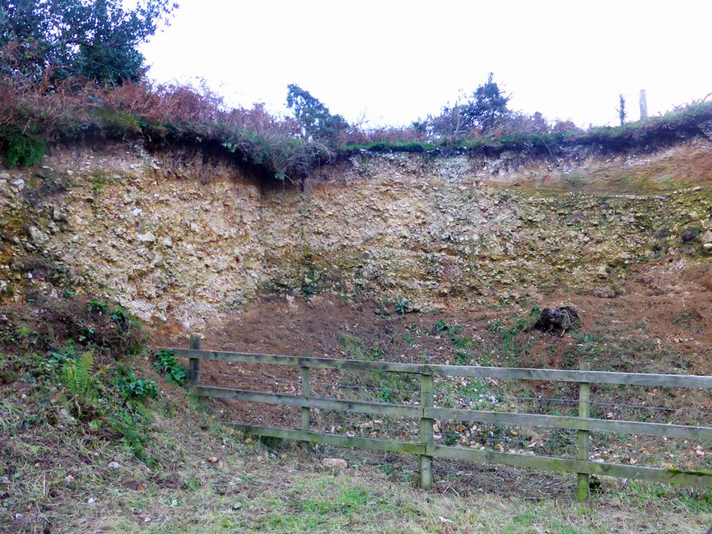 Conservation Hardown Hill