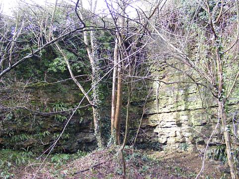 Quarr quarry