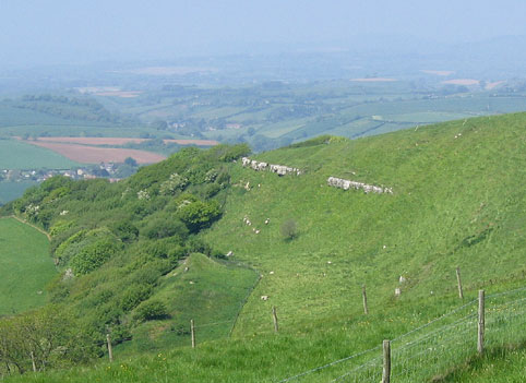 Eggerdon Hill