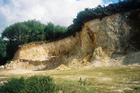 Rollington Pit steeply dipping strata