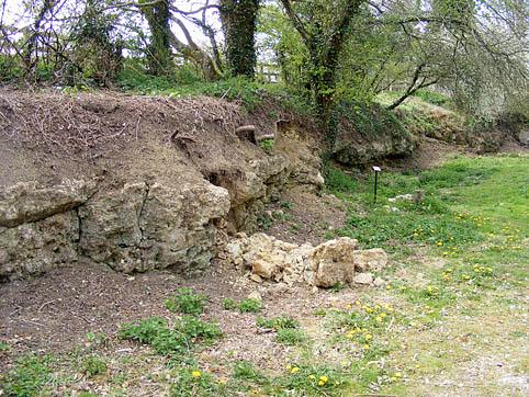 Rockpit Farm Maiden Newton